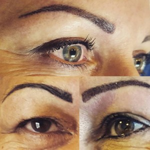 Dannevirke palmy brows